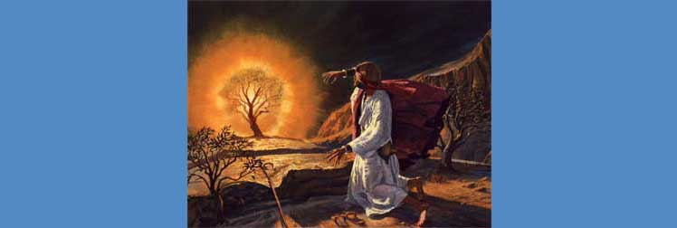 Moses and the Burning Bush Adventure